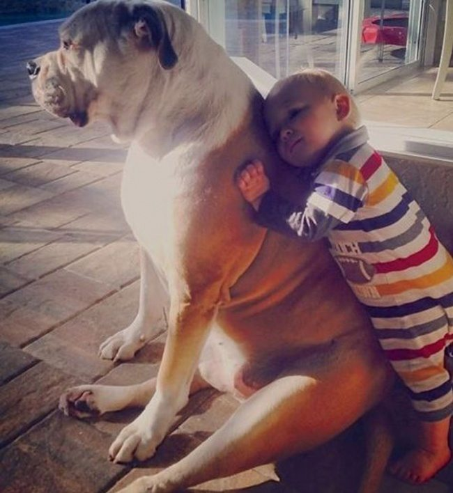 1-simply-perfect-photos-of-kids-and-their-pets