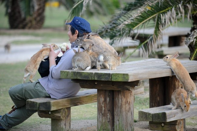 1-awesome-places-where-you-can-live-with-animals