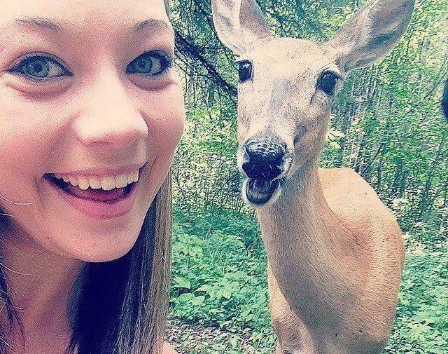 1-animal-photobombs-that-made-pics-even-more-hilarious