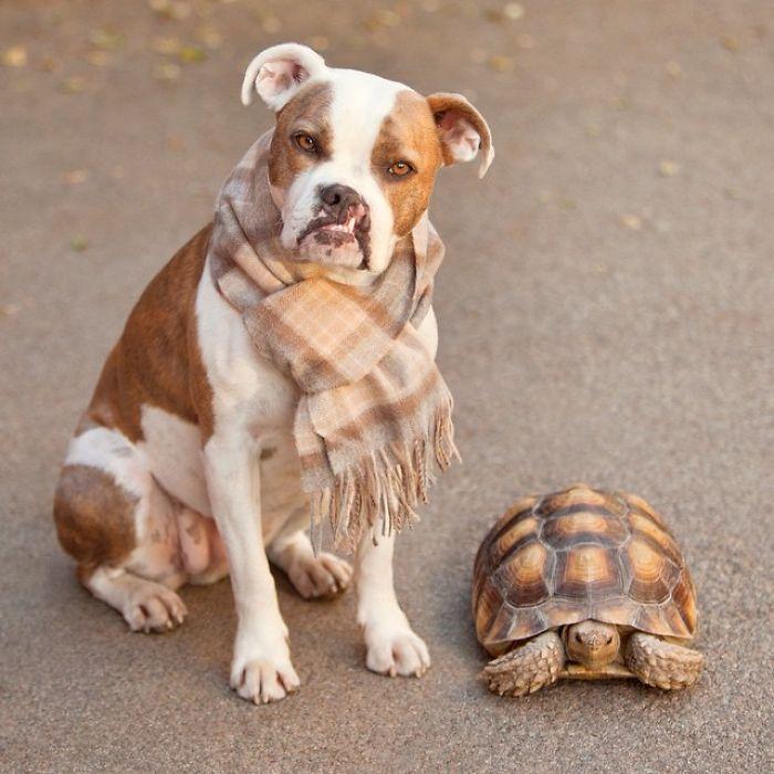 cute-friendship-1