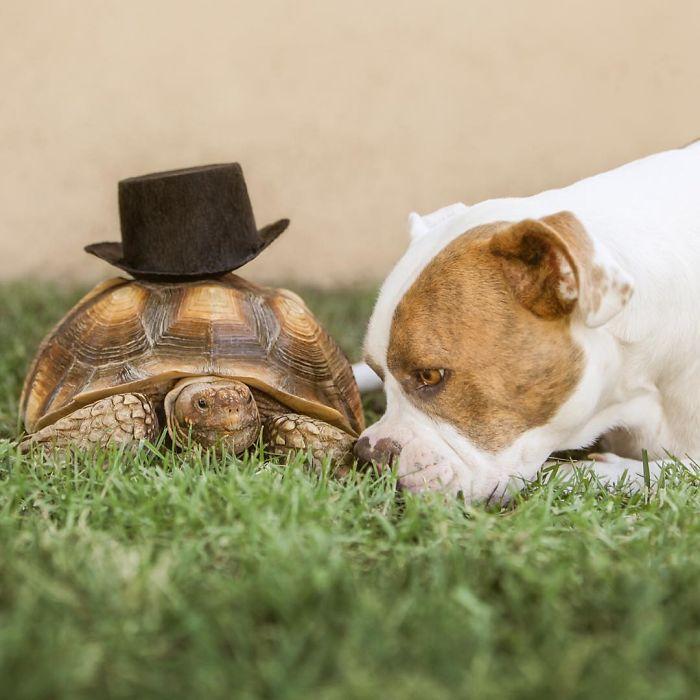 cute-friendship-8