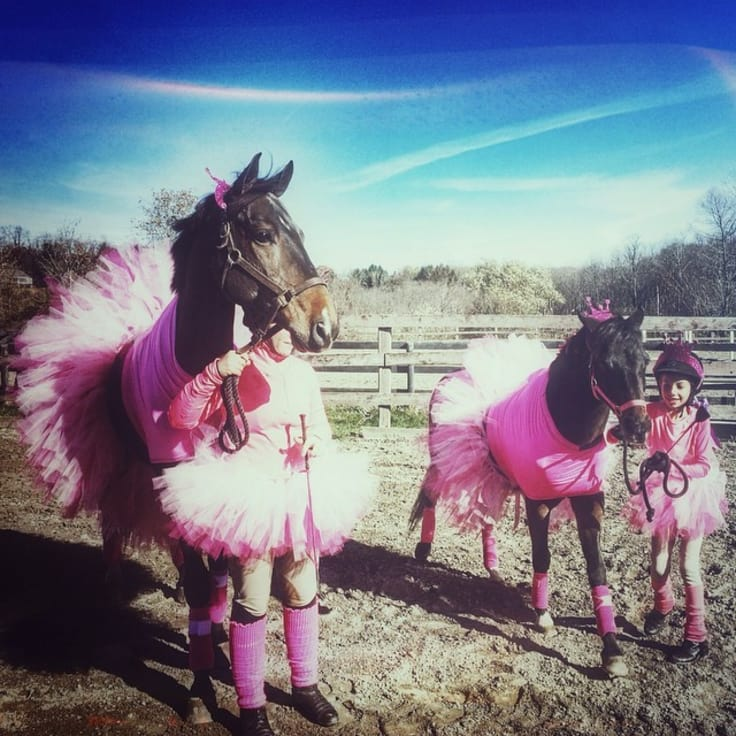 halloween-horses-1